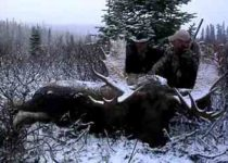 moose hunting with muzzleloader