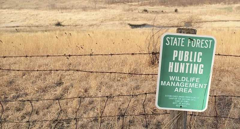 Deer Hunting New Public Land