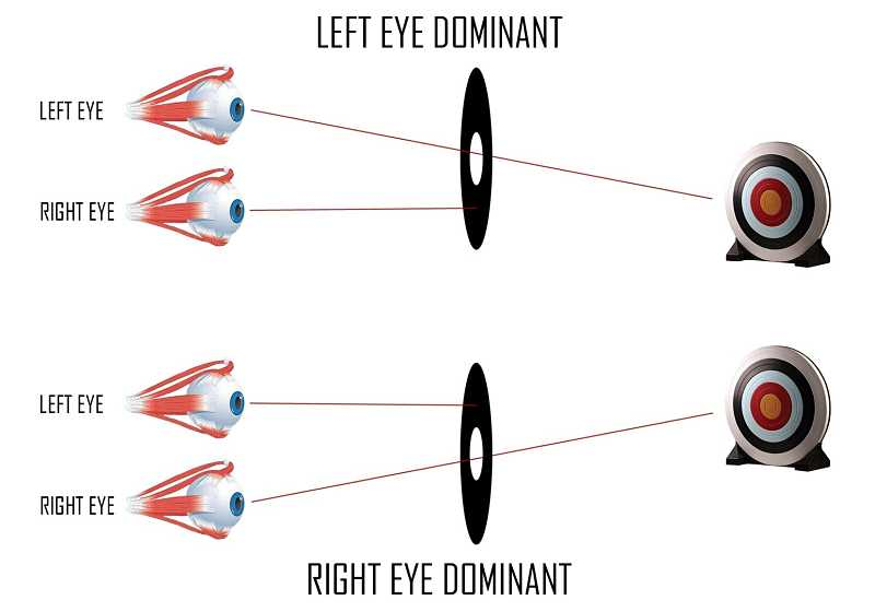 eye dominance